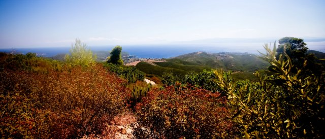 Hiking in Skiathos
